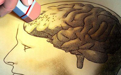 Diferencia entre perdida de memoria, demencia senil y alzheimer