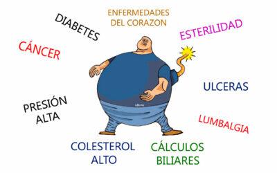 Obesidad como factor de riesgo para el desarrollo de enfermedades